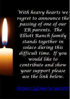 The ER family stands together in the face of tragedy